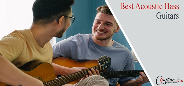 Best Acoustic Bass Guitar