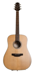 Takamine GD20-NS 6 String Acoustic Guitar